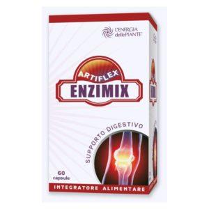 artiflex_enzimix